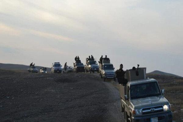 استقرار گسترده حشد شعبی در مرز عراق با سوریه برای مقابله با داعش