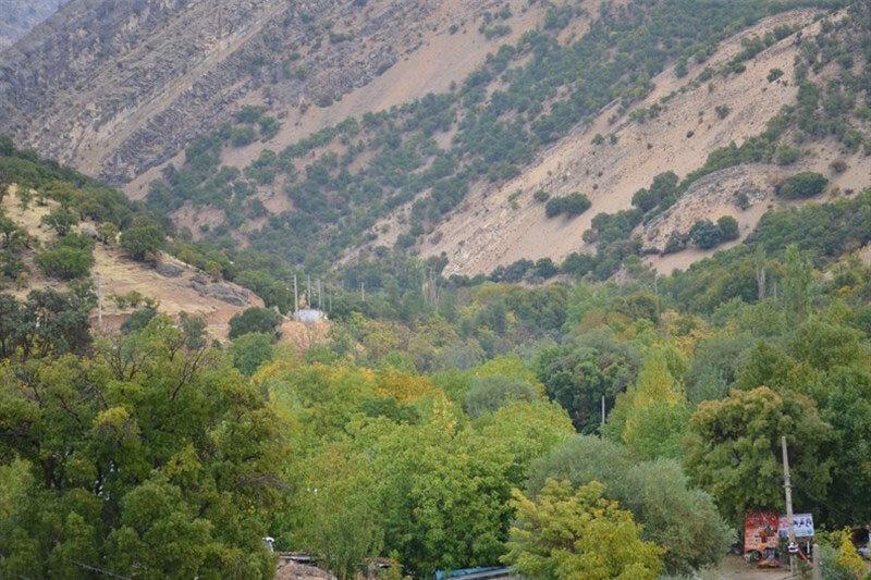 شهردار یاسوج آتش سوزی های آبشار را عمدی اعلام نمود