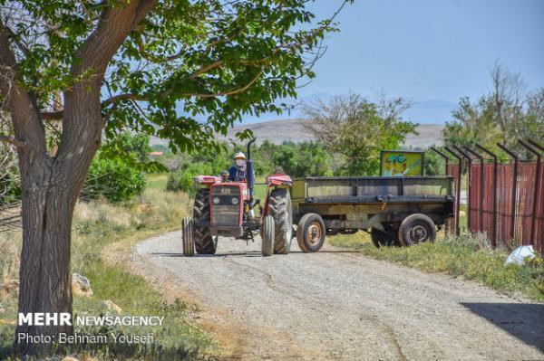 مزرعه خلاق و نوآور صنعتی و کشاورزی راه اندازی شد