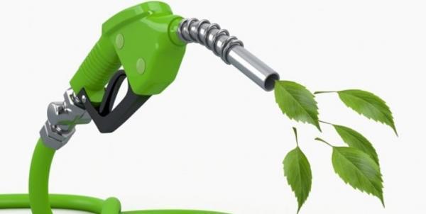 ویدئو، تولید بنزین دوستدار محیط زیست با استفاده از زیست فناوری