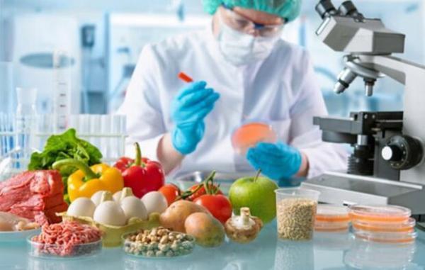6 برنامه برای تامین امنیت غذایی در کشور اجرایی می گردد